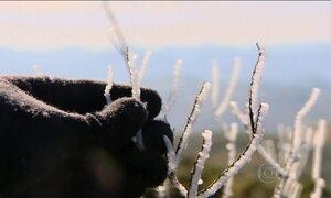 Fim de semana começa gelado no Sul do país