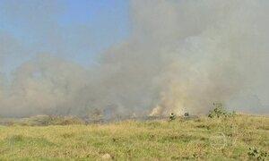 Tempo seco favorece queimadas no MS