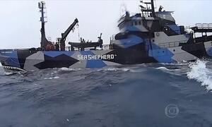 Organização realiza a maior perseguição marítima para impedir a pesca ilegal nos mares