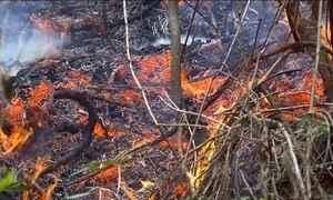Minas Gerais decreta situação de emergência por conta das queimadas