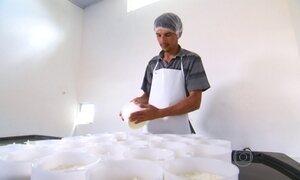 Produção artesanal do queijo do Serro é patrimônio imaterial de Minas Gerais