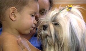 Crianças que crescem com cachorro de estimação são mais saudáveis