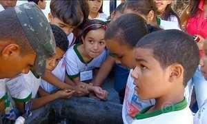 Mutirão em Aracaju tenta prevenir crianças da dengue, zika e chikunguya