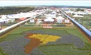 Cascavel, no PR, recebe uma das maiores feiras agropecuárias do Brasil