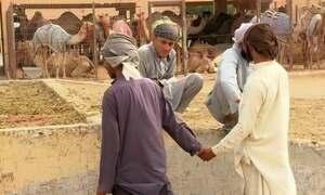 Só os homens podem andar de mãos dadas em Abu Dhabi