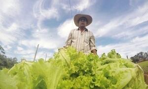 Brasileiros dedicam a vida ao trabalho em busca dos seus sonhos