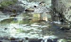 Ambientalistas querem recuperar rios que viraram redes de esgoto