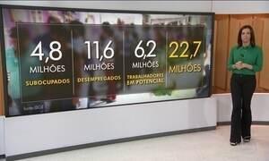 IBGE divulga retrato do mercado de trabalho no Brasil