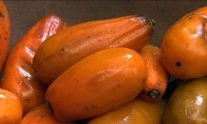 Uvaia, jaracatiá, bocaiuva; frutas também estão em extinção
