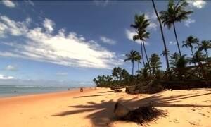 Conheça as praias paradisíacas da Península de Maraú (BA)