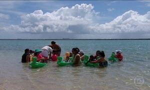 Terapia aquática promete ajudar crianças com microcefalia