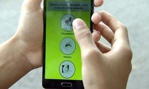Aplicativo ajuda a monitorar locais com risco de febre amarela
