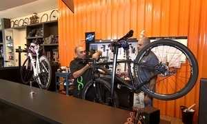 Uso da bicicleta envolve estilo de vida que gera oportunidades de negócios