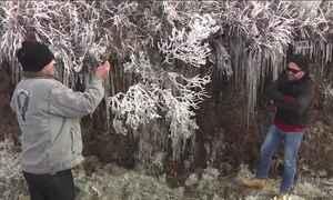 Serra catarinense registra menor temperatura do ano: - 7,4°C