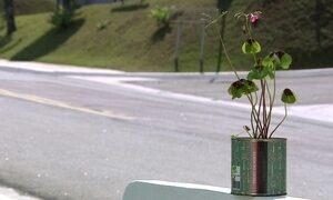"""Empresário cria jardim na lata usando o conceito de """"jardinagem pocket"""""""