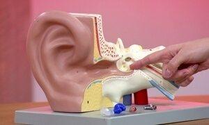 Saiba como cuidar bem dos seus ouvidos