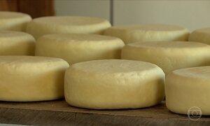 Fabricantes de queijo recebem auxílio para legalizar seus laticínios em MG