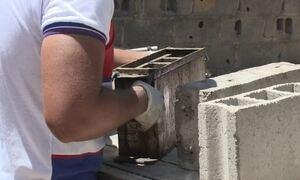 Cascas de mariscos são usadas para fazer tijolos