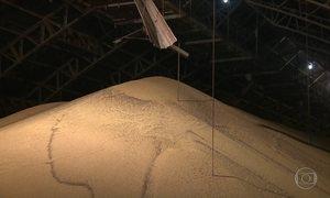 Preço da soja sobe no Paraná