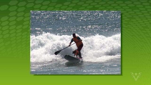 Parafina fez bonito e surpreendeu nas ondas da Califórnia