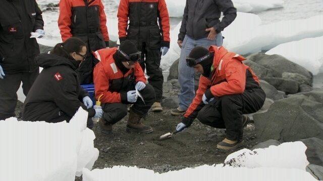 Estudantes acompanham pesquisa de remédio contra câncer na Antártica