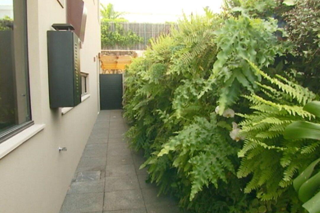Veja como montar um jardim vertical no corredor de casa ...