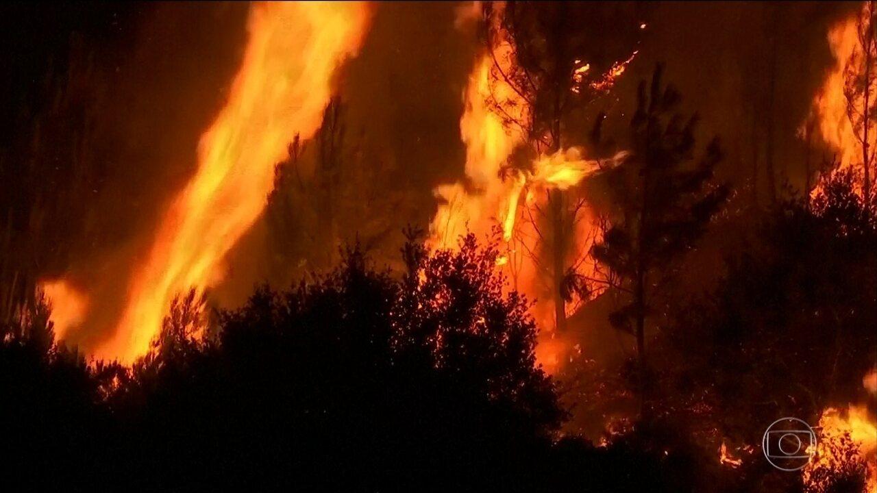 Avião que combatia incêndio florestal cai em Portugal