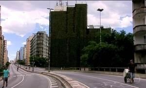Jardins verticais dão um verde a mais no cenário cinza de São Paulo