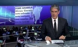 Secretaria de Saúde de Minas confirma 23 mortes por febre amarela no estado
