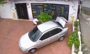 Câmeras de segurança flagram furtos de vasos de plantas em várias cidades