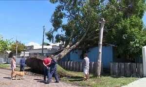 Cidades de Santa Catarina registram ventos acima de 60 km/h