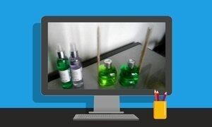 Saiba qual é o melhor canal de vendas para aromatizantes de ambiente