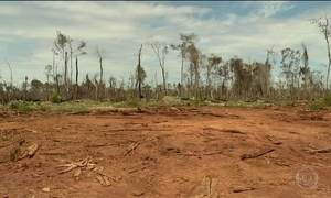 Projeto que reduz proteção ambiental da Amazônia é alvo de críticas