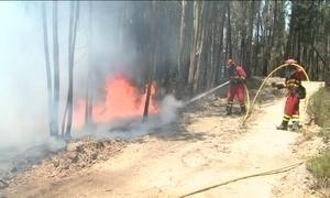 Bombeiros controlam 95% do incêndio florestal e Portugal