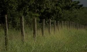 Saiba como diminuir a incidência de raios nas cercas com arame