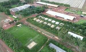 Comida, futebol e meio ambiente na safra de Mato Grosso