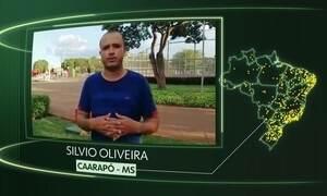 Vídeos de Caarapó, Ferreira Gomes, Herval, Piúma, Imaculada e Valinhos