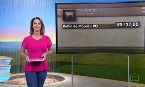 Cotações Globo Rural