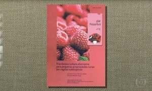 Quer aprender a cultivar framboesa?