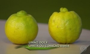Limão doce ou limeta serve para fazer suco, sorvete e temperar carnes e saladas