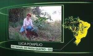 Vídeos de São Miguel do Passa Quatro, Caçapava, Quixaba, Arroio do Meio, Tapira