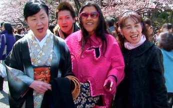 Regina Casé visita o Japão para conhecer o império dos sakuras - A expectativa é grande para a época de florescimento das sakuras. Em português, significa cerejeira. Turistas do mundo todo se deslocam para ver a beleza da flores.