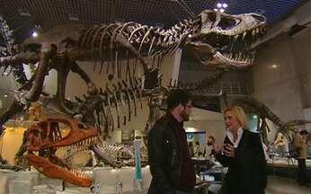 Morde e Assopra - Primeiro capítulo na íntegra - Júlia descobre uma nova espécie de dinossauro, mas perde tudo em um terremoto. Ícaro encontra-se com um gênio da robótica. Tiago é expulso da fazenda de Abner.