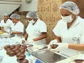 Produção doméstica de chocolate é um bom negócio para a Páscoa - Nesta época do ano, a produção e venda de chocolate e produtos derivados triplica em todo o mundo. Diante da grande demanda no setor, empresários inovam ao oferecer cursos que ensinam como começar e lucrar com a produção caseira de achocolatados.