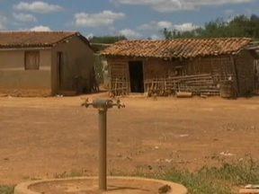 Mais de 500 municípios sofrem com seca no Nordeste - A Bahia é o estado que mais sente os efeitos da seca. Na cidade de Casa Nova, segundo a prefeitura, 270 localidades, onde vivem pelo menos 15 mil pessoas, estão sem fornecimento de água.