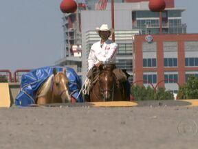 Brasileiro deixa o Canadá para atravessar as Américas cavalgando - Aos 25 anos, Filipe Leite está começando a percorrer a cavalo os 16 mil quilômetros que separas duas cidades com rodeios famosos: Calgary, no Canadá, e Barretos, no Brasil.