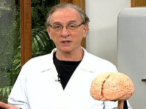 Hábitos podem fazer mal ao organismo - Segundo o Dr. Arthur Kauffman, o cérebro gosta quando fazemos tudo sempre igual. Ele economiza energia e tem prazer. Mas os hábitos podem fazer mal ao organismo.
