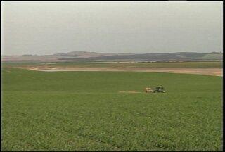 Produtores da fronteira oeste estão preocupados com a falta de água - Há cerca de dois meses para o início do plantio, ainda falta água nos reservatórios