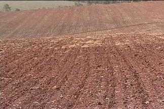 É hora de plantar feijão em Capão Bonito, SP - Produtores que contam com irrigação começam a plantar, mas estão continuam preocupados com o clima