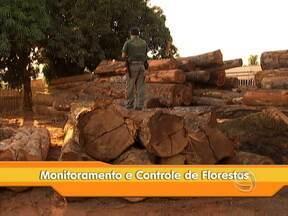 Seminário em Cuiabá discute o monitoramento e o controle da atividade florestal - Além dos representantes da indústria madeireira, também vão participar agentes fiscalizadores do poder público e organizações não governamentais ambientalistas.